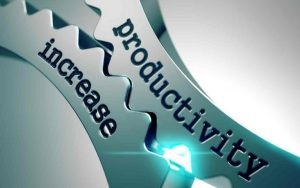 gobierno y productividad