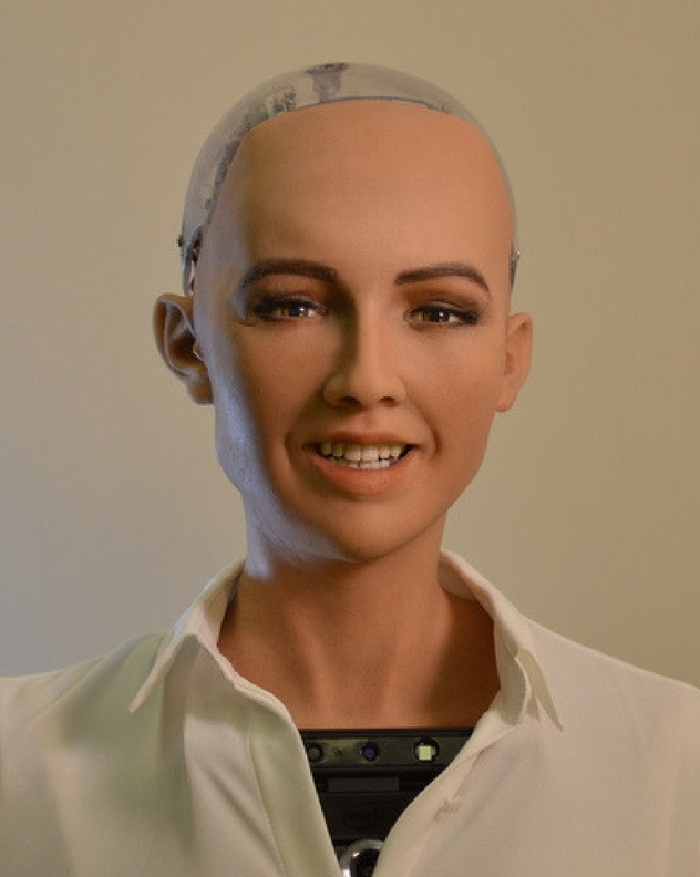 sophia the ai robot